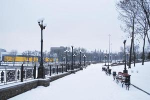 brug in het park op een winterse dag in donetsk
