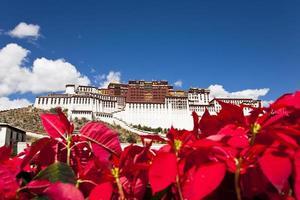 potala-paleis, lhasa, tibet foto