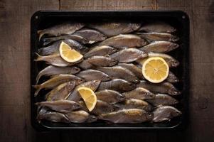 vers water vis