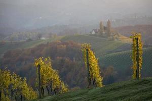 herfst in het zuiden van Stiermarken, een oud wijnbouwland in oostenrijk