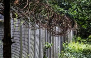prikkeldraad hek in de buurt van bosrijke omgeving foto