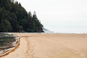 mistig strand gedurende de dag