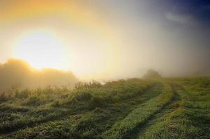 zonsopgang op het platteland