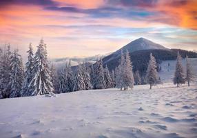 kleurrijke winter zonsopgang in de mistige bergen