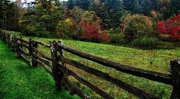 autumng seizoen in de rokerige bergen foto