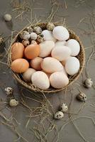 verschillende eieren