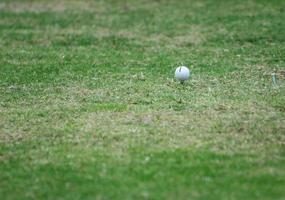 golfbal op tee foto