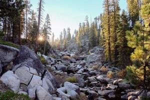 stroom in vallei bij zonsopgang