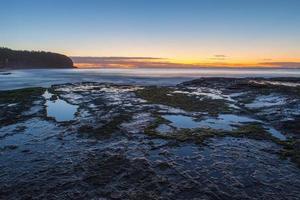 mos op de kust bij zonsondergang foto