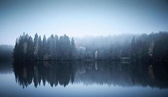 landschap met bomen aan een kust, mist en stil meer