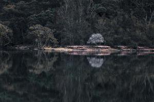 groene berg bij stilstaand water