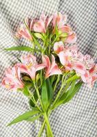 bovenaanzicht van een boeket van roze kleur alstroemeria bloemen foto