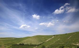 Astigiano, Piemonte, Italië foto