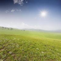 groen veld met witte wolken