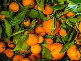 sinaasappelen met bladeren foto