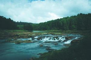 rivier door een bos