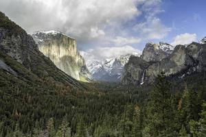 landschapsfotografie van groene bladbomen en rotsachtige bergen foto