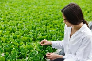 vrouw in witte laboratoriumjas onderzoekt salade en kool