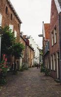 België, 2020 - gebouwen langs een geplaveide steeg