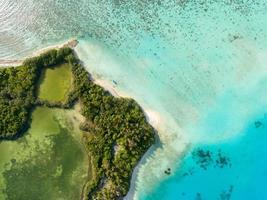 luchtfoto van een groen eiland foto