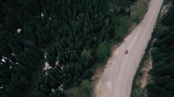 luchtfoto van een rode auto op een weg tussen bomen