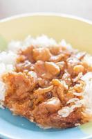 geroerd varkensvlees met saus bovenop rijst
