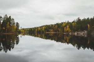 reflecties van de bomen in de rivier foto
