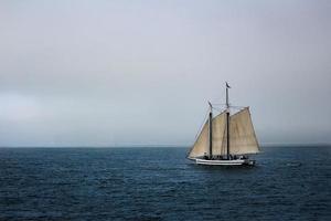 San Francisco, Californië, 2020 - zeilboot op zee
