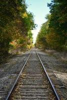 treinrail tussen groene bomen overdag