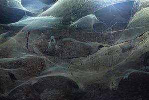 spinnenwebben univers