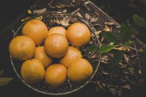 een mand met verse sinaasappelen in de natuur