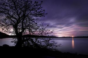 silhouet van een boom in de buurt van een watermassa bij zonsondergang
