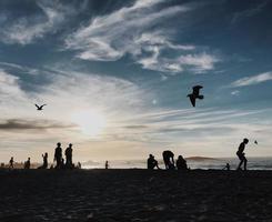 silhouet van mensen die genieten van het strand foto