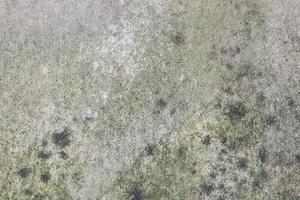 muur gemonteerde mortel mos foto