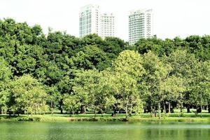 stadspark met wolkenkrabbers achter bomen foto