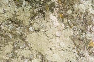 patroon stenen achtergrond