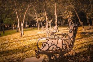 lege banken in een park