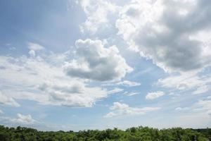 lucht en wolken boven het bos