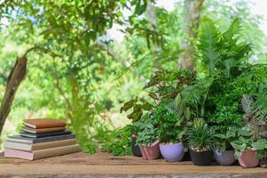 boeken en planten klok op het bureau