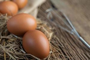 rauwe eieren op hennep en stro