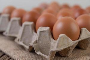 rauwe biologische kippeneieren