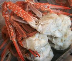gestoomde krabbenpoten foto