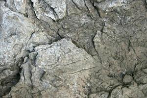grijze rots textuur foto