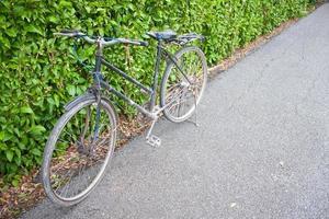fiets in het park. foto