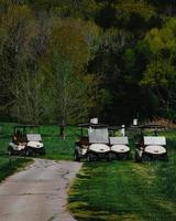 witte golfkar op groen grasveld overdag foto
