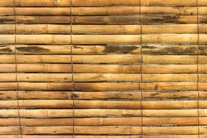 gele bamboe voor achtergrond foto