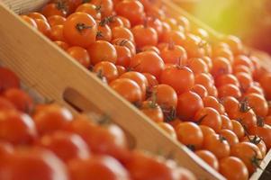 tomaten in een houten kist