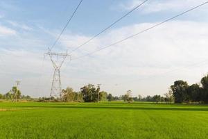 elektriciteitstransmissielijnen over de rijstvelden