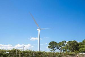 windturbines voor het opwekken van stroom