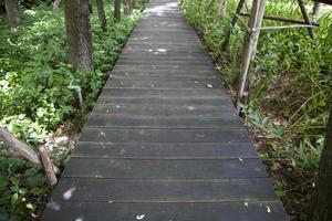 houten brug in een park in Thailand